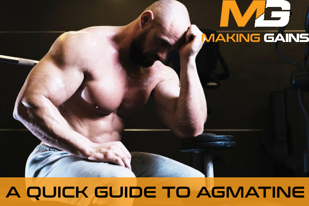 A Quick Guide to Agmatine